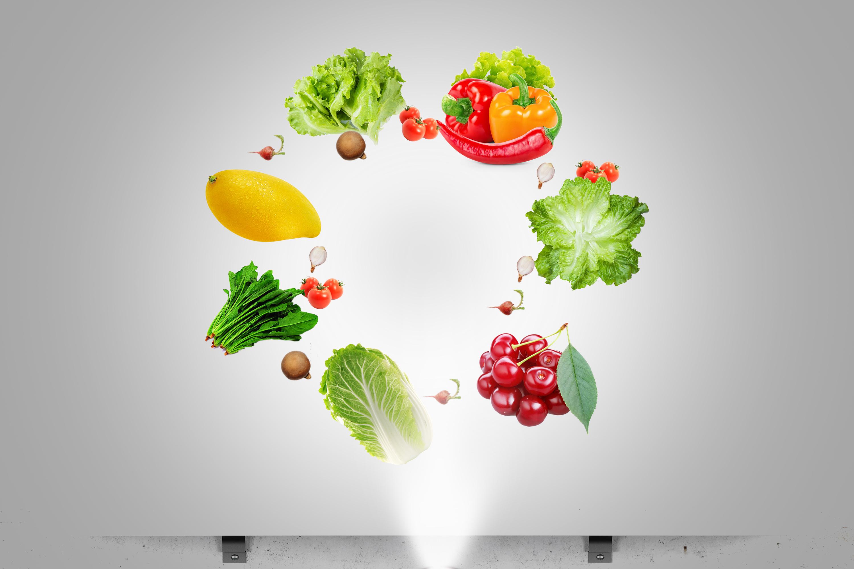 營養配餐師(高級)文憑課程 (網上課程)