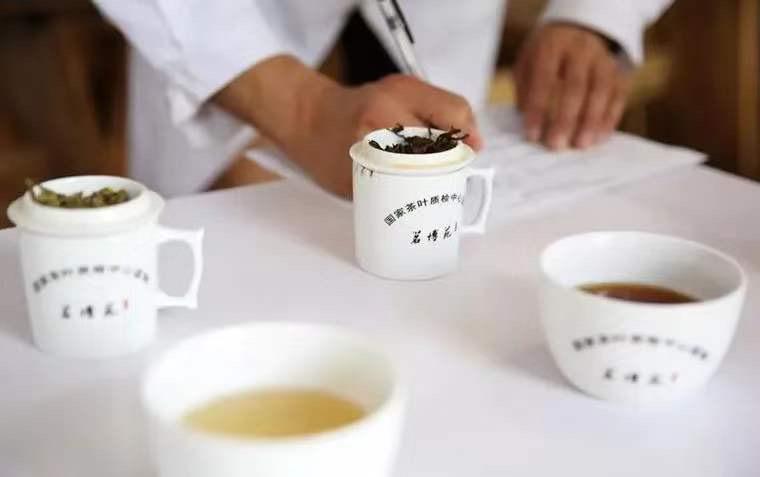 中國評茶師專業培訓證書課程